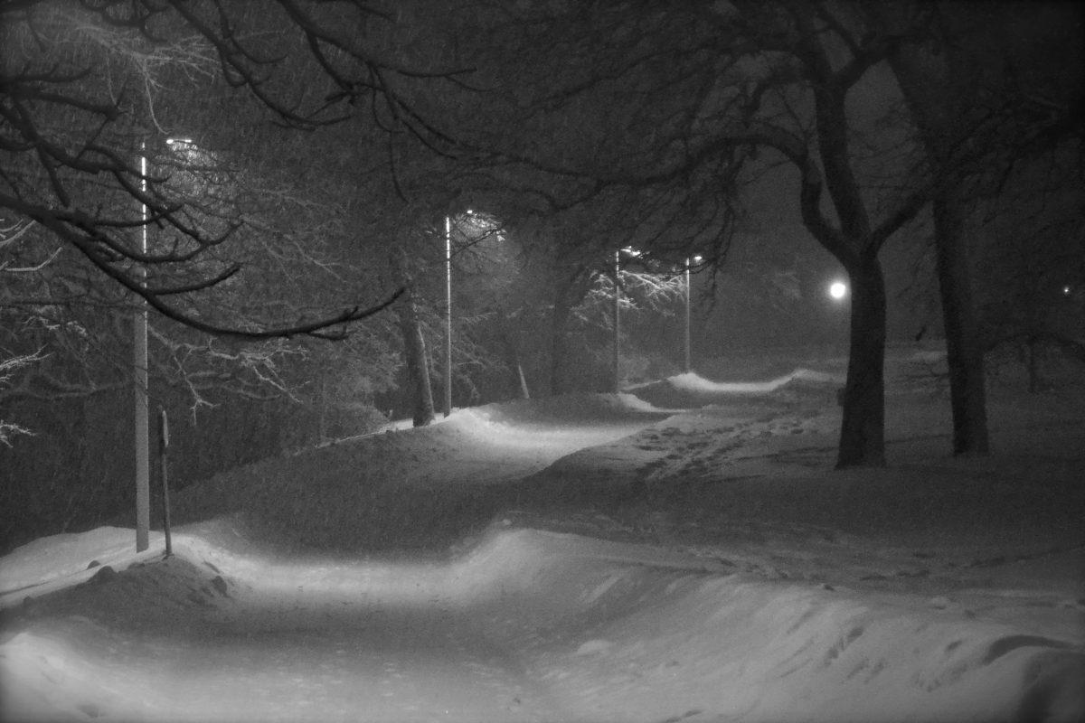 Snowy trail at Minnehaha Park
