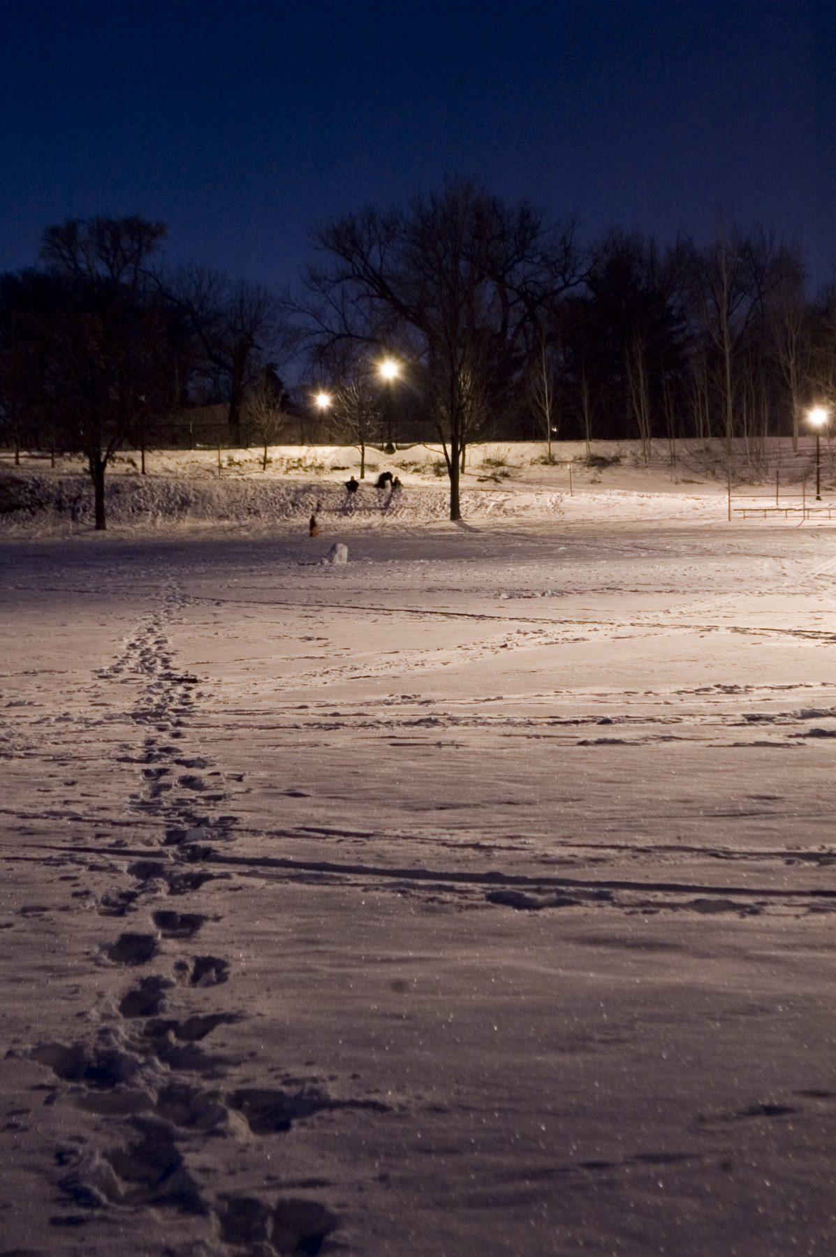 day-15-night-sledding-at-brackett-park