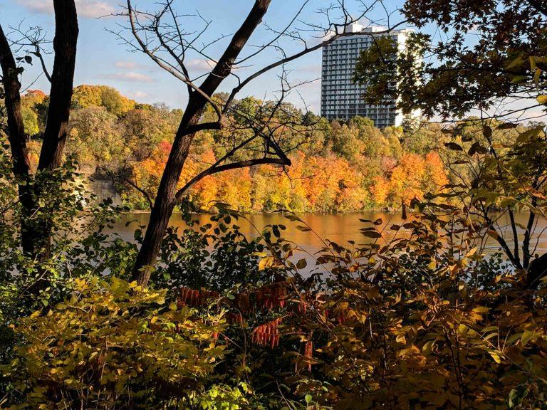 Autumn colors along Mississippi River