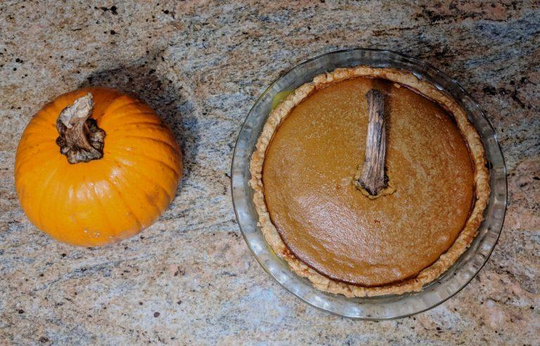 Pumpkin and pumpkin pie